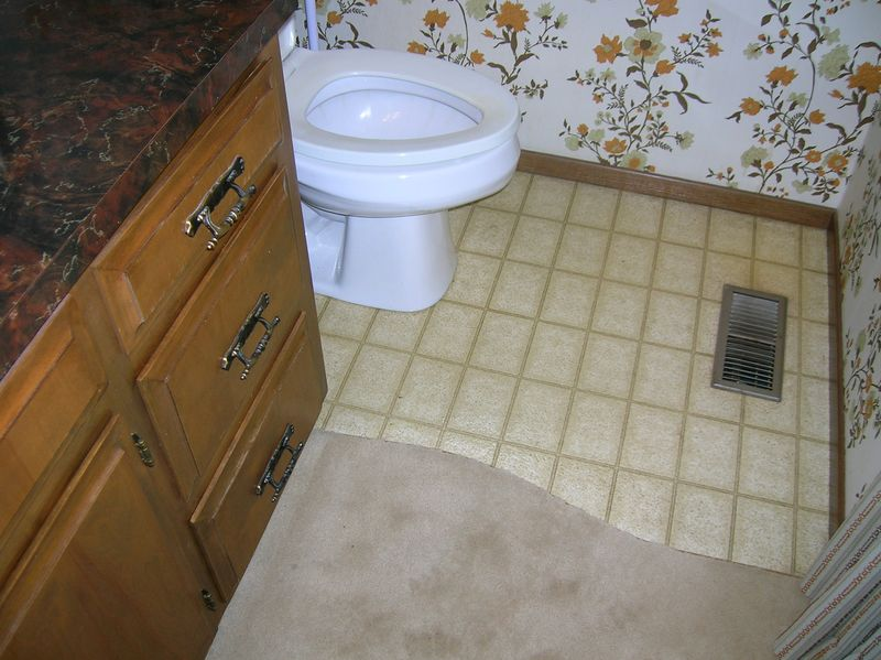 Bathroom carpet and linoleum