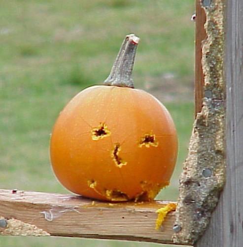 Pumpkin_target